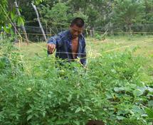 agroecologia03
